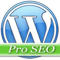 Wordpress Pro Installation